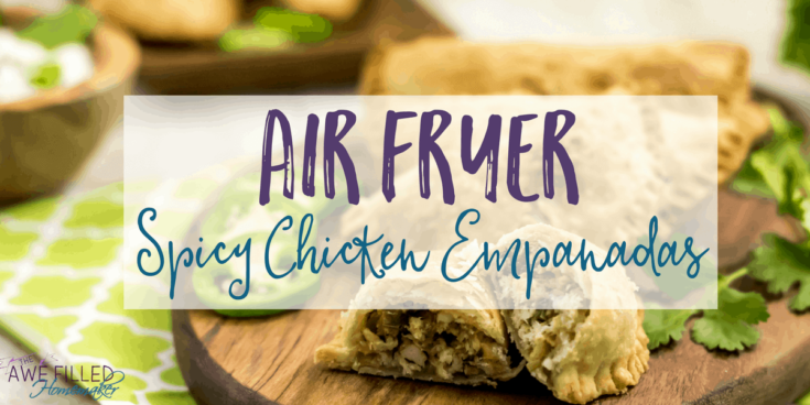 Air Fryer Spicy Mexican Shredded Chicken Recipe for Empanadas