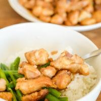 Air Fryer Mongolian Chicken (Gluten-Free)
